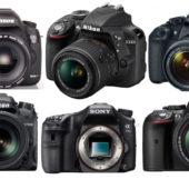 Die besten Spiegelreflexkameras für 700€