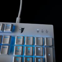 Eine weiße Gaming Tastatur? Tesoro Gram Spectrum Testbericht